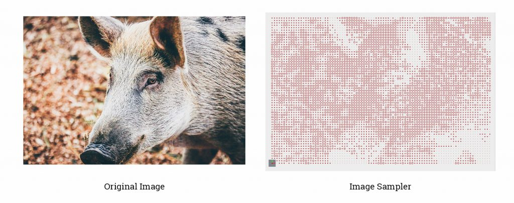 Image Sampler Example -boar
