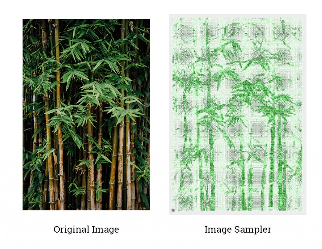 Image Sampler Example -bamboo